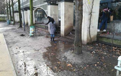 Le parc de Bercy, nouveau hall de Gare ?